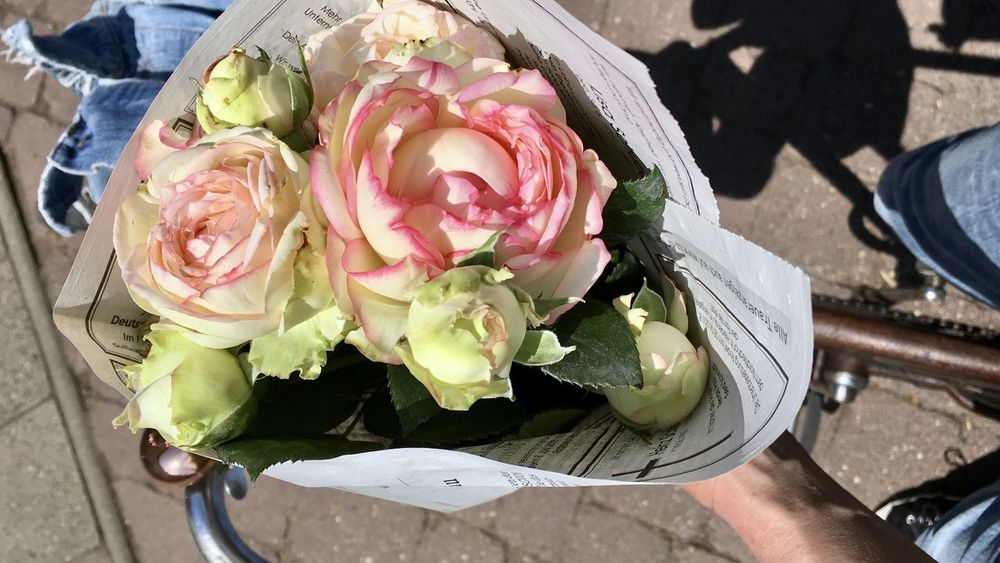 Beauty In Nature Bike Bouquet Close-up Flower Flower Arrangement Flower Head Flowering Plant Fragility Freshness Hand High Angle View Holding Human Body Part Inflorescence Nature One Person Outdoors Petal Plant Rosé Rose - Flower Roses Vulnerability