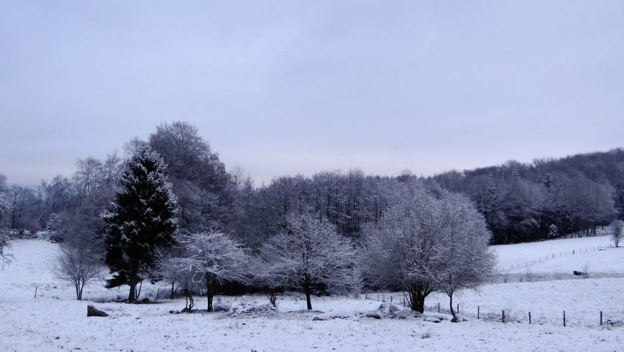 Landscape Winter Snow Trees Paysage France Limousin Centre Hivers Panorama