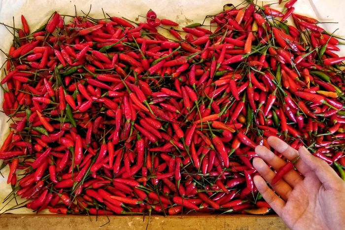 Farmers Market Farmer Market Vegetables Vegan Red Dried Food Spice Food And Drink Close-up Red Chili Pepper Dried Wilted Pepper Chili Pepper Jalapeno Pepper Ground - Culinary Chili  Stall For Sale Green Chili Pepper