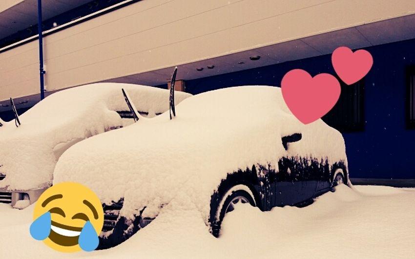 ⛄ Snow MyCar Hahahaha 😂😂😂😂😂 Copen