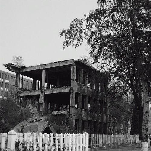 唐山大地震38周年 河北理工大学院内的框架结构没有坍塌。