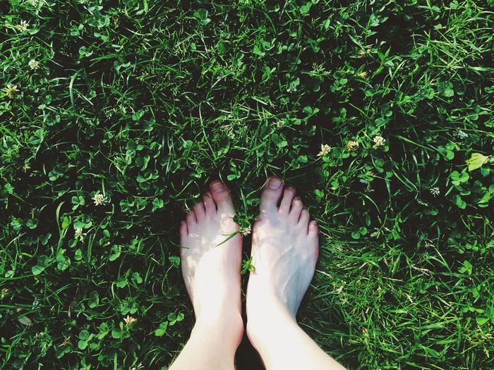 Adult Adults Only Barefoot Close-up Day Directly Above Grass Green Color Human Body Part Human Foot Human Leg Lifestyles Low Section Nail Polish Nature One Person Outdoors People Personal Perspective Plant Real People Women