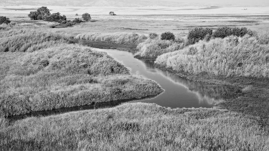 Field Landscape No People Outdoors Nature Tranquil Scene Day Tranquility Scenics Water Beauty In Nature Grass Rural Scene Growth Sky Blackandwhite Black & White