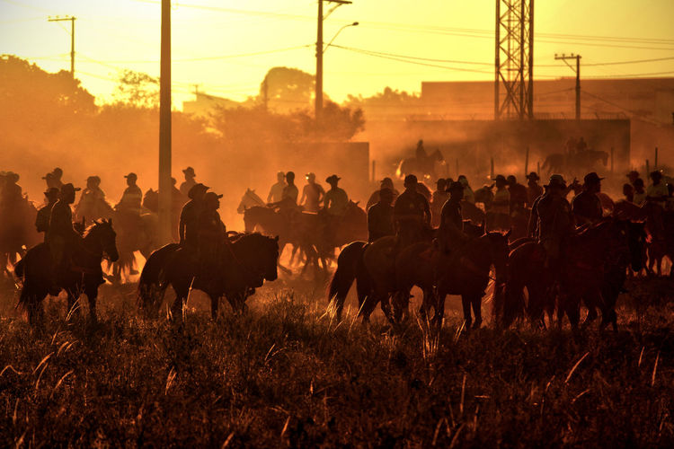 People riding horses on field during sunset