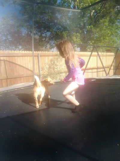 One Girl Only Childhood One Person Child Girls Pets Full Length Day Domestic Animals Outdoors Pet Portraits