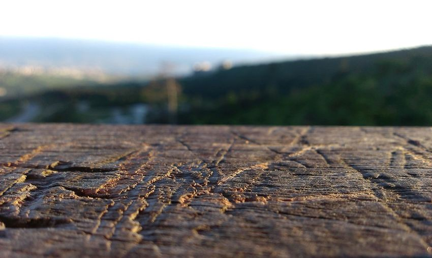 #close Shoot #nice #scratch #TURKEY/Kocaeli #Wood