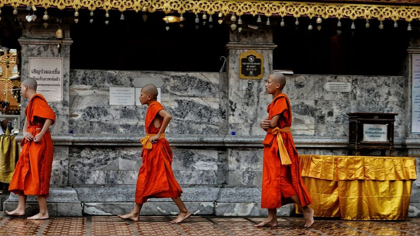 Walking monks. Monk  Child ASIA Thailand Meditation Mind  Healthy Chiang Mai Chiangmai Doi Suthep Temple Doi Suthep Temple Traveling Discovering Lifestyles Budism Budist Tempel Budist Dirator's Bests Uniqueness Art Is Everywhere This Is My Skin