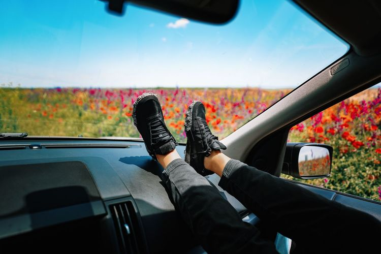 Low section of woman traveling in car against colorful field in summer