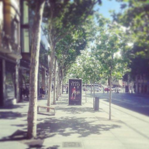 Madridbytelva