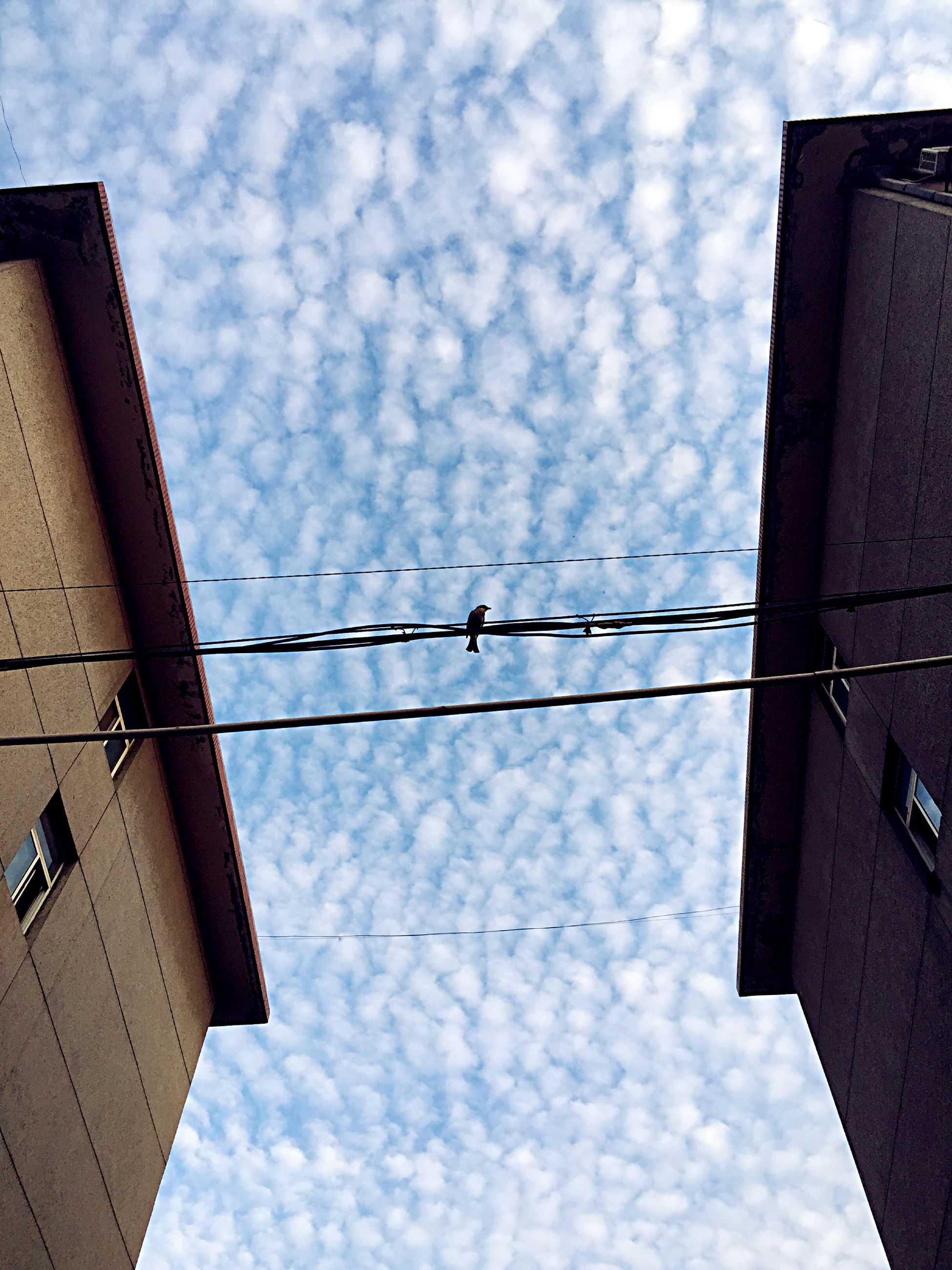 building exterior, architecture, low angle view, built structure, sky, cloud - sky, building, cloudy, power line, cloud, city, outdoors, no people, cable, tower, residential building, day, high section, residential structure, silhouette