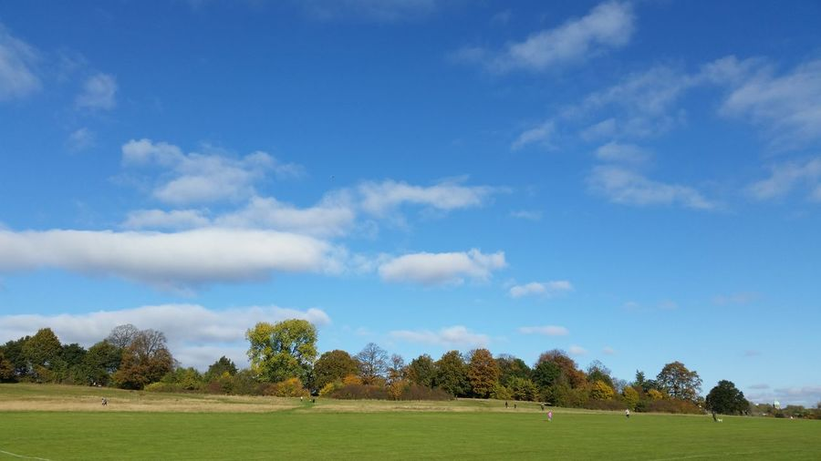 Autumn London Beauty In Nature Blue Blue Sky And Clouds Day Environment Field Grass Green Color Hampsteadheath Idyllic Landscape Nature No People Scenics - Nature Sky Tranquility Tree