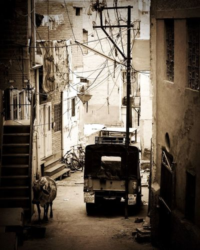 Traveling Travel Photography Indian Life Street Photography Urbanphotography Urbanexploration Blackandwhite Silhouette Black And White Photography Monochrome Light And Shadow Fortheloveofblackandwhite Rajasthan India From My Point Of View Walking Around