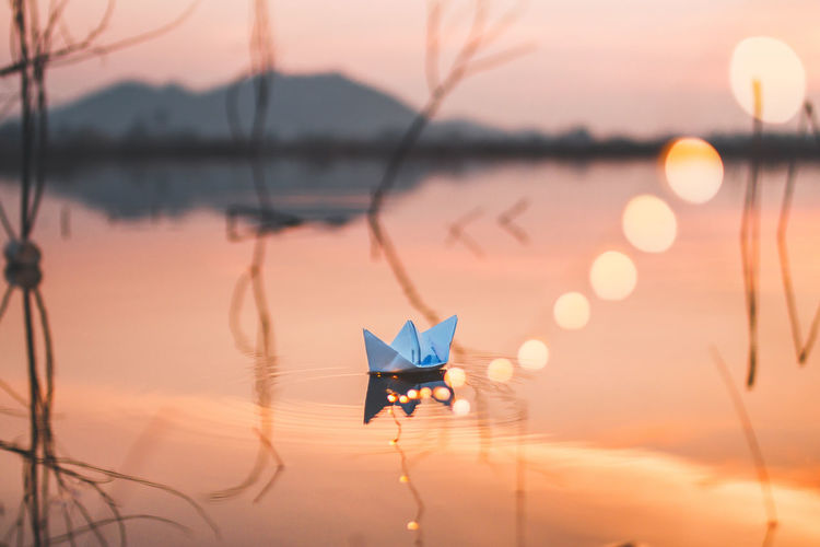 High angle view of paper boat floating in lake during sunset