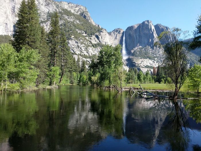 Reflection Water Waterfall Spring Scenics Sky Outdoors Beauty In Nature Nature Landscape Yosemite Falls Yosemite National Park Travel Destinations Iconic Landscape Granite California Day