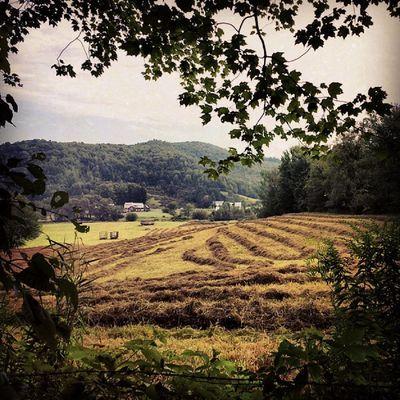 Farm on the edge of the trail. Jerichovt Outforawalk Vt Vtphoto vermont vermontbyvermonters summerday champlainvalley farming farm. hay