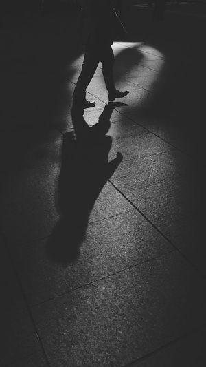 Strideby | Osanpo Camera | Blackandwhite Silhouette | Open Edit
