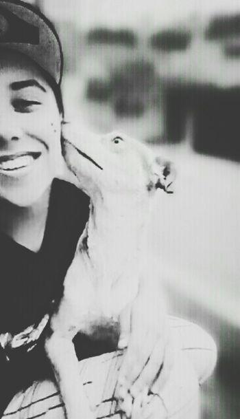 MeAndMyDog Love Dogfriend
