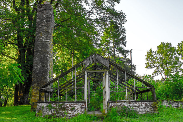 This is a image of an abandoned green house no longer in use in Valley Forge national historical park in Valley Forge, Pennsylvania Abandoned Places EyeEm Nature Lover Flower House Overgrown Pennsylvania Valley Forge National Park Abandoned Buildings Day Derelict Building Forest Green House Growth Howard Roberts Land Nature No People Outdoors Plant Sky Tranquility Tree Tree Trunk Trees And Nature Trunk Woods
