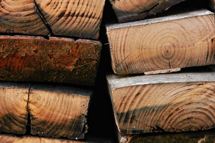 wood Wood Wood - Material WoodLand Pattern Pattern, Texture, Shape And Form Patterns Tree Piled Up Pile Of Wood Textures and Surfaces EyeEm Selects Backgrounds Full Frame Stack Textured  Close-up Deforestation Forestry Industry Environmental Damage Woodpile Pile Firewood Lumber Industry