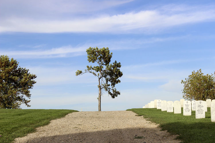 American Blue Cemetery Cloud Dead People Grass Grassy Gravel Graves Graveyard Beauty Landscape Military Nature Outdoors Sky Tranquil Scene Tranquility Tree War