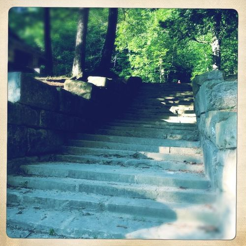 Trail On A Hike Hiking Outdoors Enjoying The Sights Stone Stairs
