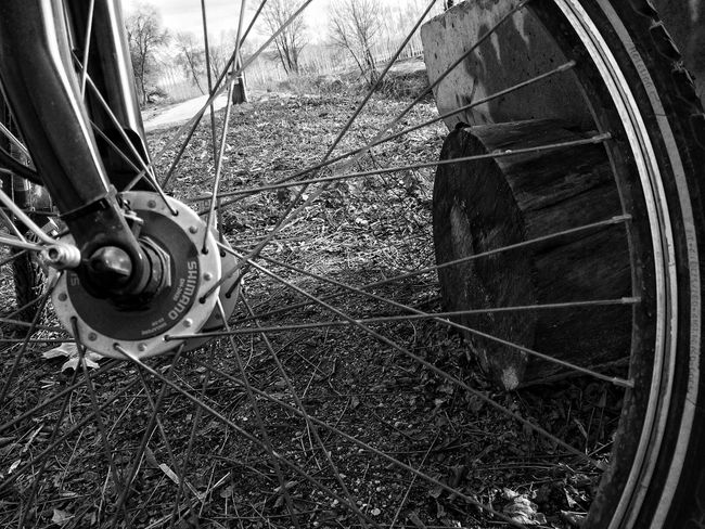 Sobre rodes... Enjoying Life From My Point Of View Dreaming Bicycle Somosfelices Black And White Photography Blackandwhite My Best Photo 2014 Share One Thing About You ?