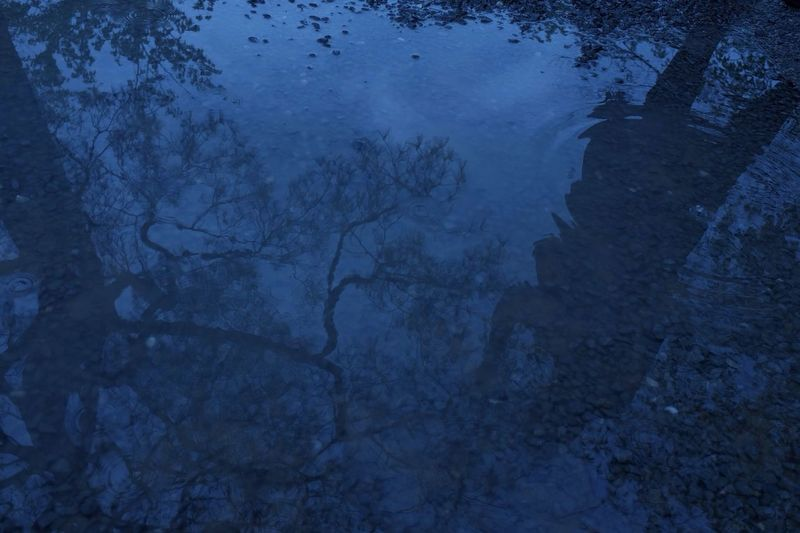 Reflection Rainy Days Rain Blue