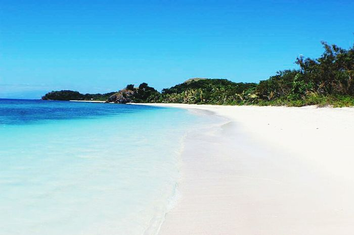 Beach Blue Sea Sand Travel Destinations Nature Water Tranquility Scenics Tranquil Scene Clear Sky Landscape Beauty In Nature Vacations Fiji Water Fidji Fiji Islands Fiji Beauty In Nature Nature