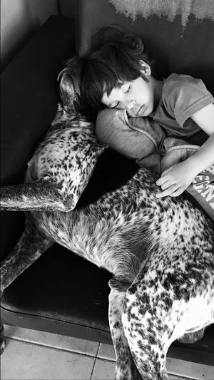 L' Heure de la sieste ... Pets Animals love Dog Valencia, Spain Boy Animal House Animal Themes Childhood Personal Perspective
