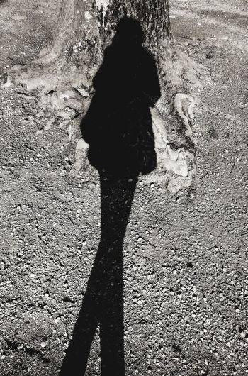 Hello That's Me ! Well... My Shadow 😊 ... Shadows Shadows & Lights Shadowplay Sun Sun Light Silhouette Silhouette_collection Long Legs 😄 Tree Tree Roots  Capture The Moment Hanging Out France Blois Black And White Blackandwhite Photography Showcase March Photography In Motion