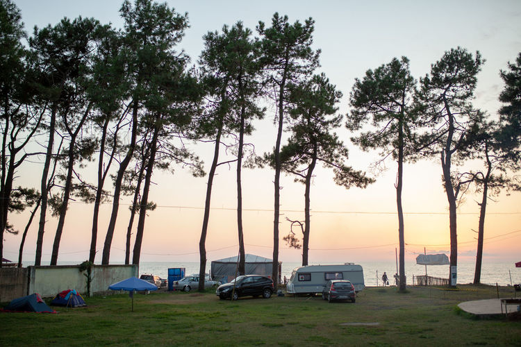 Camping for caravan houses at the Black Sand Beach Ureki Georgia 2018 Ureki Georgia Summer Summertime Beach Camping Camp Travel Traveling Travel Destinations Motor Home Ruver Plant Tree Mode Of Transportation Transportation Car Motor Vehicle Land Vehicle Sky Nature Sunset Growth Road Beauty In Nature Land Outdoors Day Field No People Grass