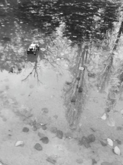 toy car walking on the water Toy Toy Car Toys Water Blackandwhite Wall On The Water Leaves Reflected In Water