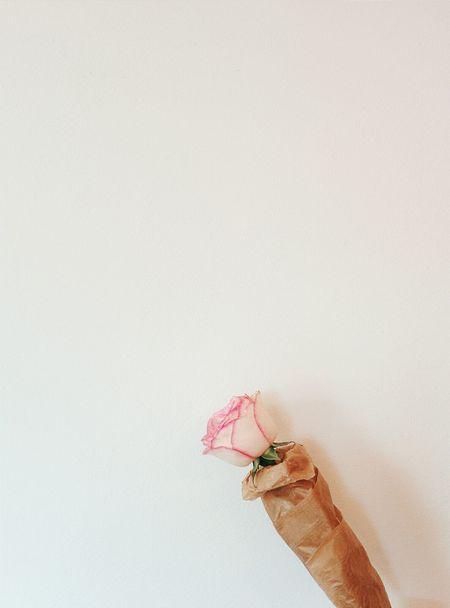 Flower. Rosé Vscocam Minimalism White