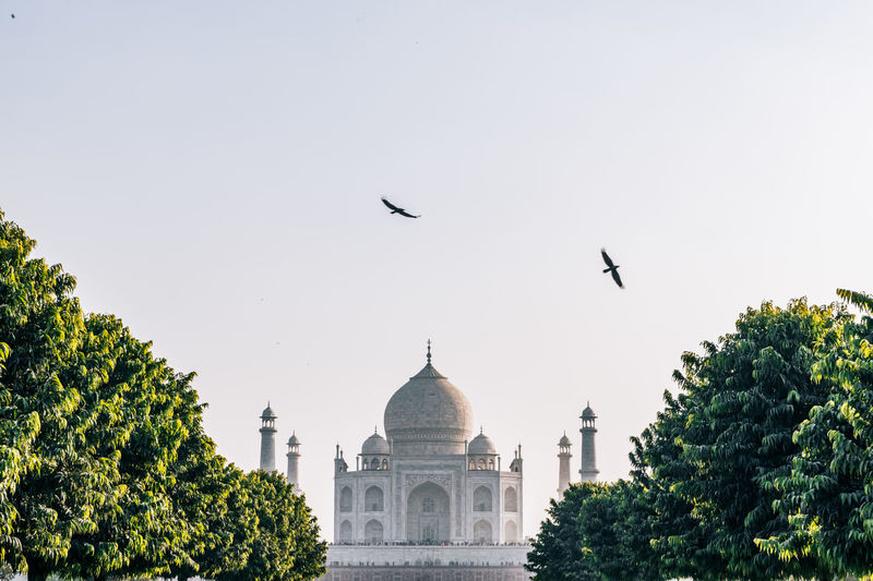 Birds flying by taj mahal against sky