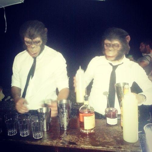 Monkey cocktails! Hibeach