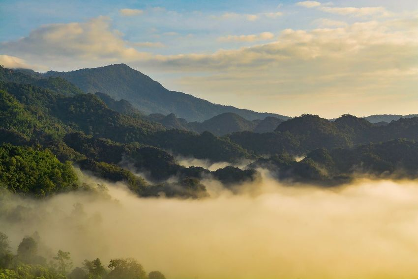 Mountains and mist Mountain Beauty In Nature Scenics - Nature Sky Tranquility Tranquil Scene Plant Environment Landscape Tree Mountain Range Idyllic No People Cloud - Sky Outdoors Non-urban Scene Nature Fog Land Growth