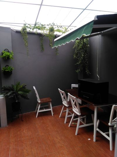 Plant Seat