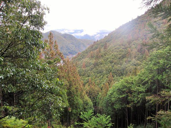 Kumano Kodo Pilgrimage Trails Hiking Japan Japanese Food Japanese Temple Journey Kumano Kumanokodo Nachiwaterfall Onsen Onsen Egg Pilgrimage Pilgrims Pogoda Shinto Shinto Temple Trail
