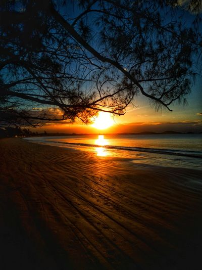 Hello EyeEm friends 🤗 Sunset Beauty In Nature Orange Color Idyllic Sunlight Water Tree Beach Wow Shot Huaweiphotography Tadaacommunity Brasil EyeEmbestshots Eye4photography  Huawei Mate 9 EyeEm Nature Lover Lovephotography  Summer