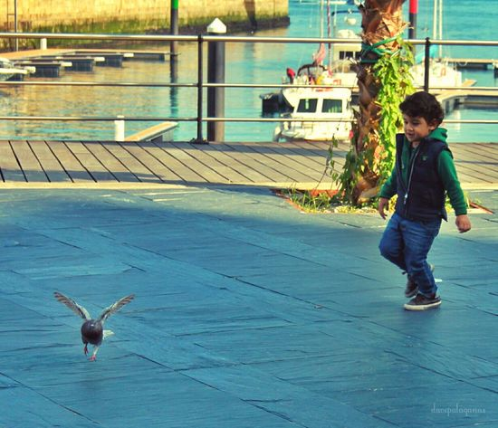 Vigo Spain♥ Childsplay Childhood Memories Chasing Pigeons Eyeemphotography Traveltheworld EyeEm EyeEm Gallery Eye4photography  Taking Pictures Capture The Moment From The Archives EyeEmBestPics Happykid Taking Photos Eyeem Photography