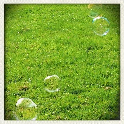 Bubbles Bubbles Life Is Beautiful