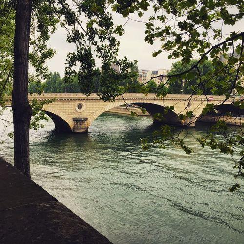 Paris Seine Ile Saint Louis