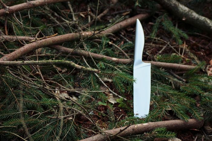 Deep Dark Woods Knife Lost In The Woods Forest Floor Deep Dark Woods.... Big Knife Thrown Away Forest Into The Woods Creepy A Walk In The Woods Strange Weapon Caught Off Guard Caught Misplaced Out Of Place  Shiny Things