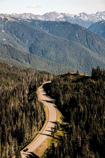 Scenic view of mountains at olympic national park