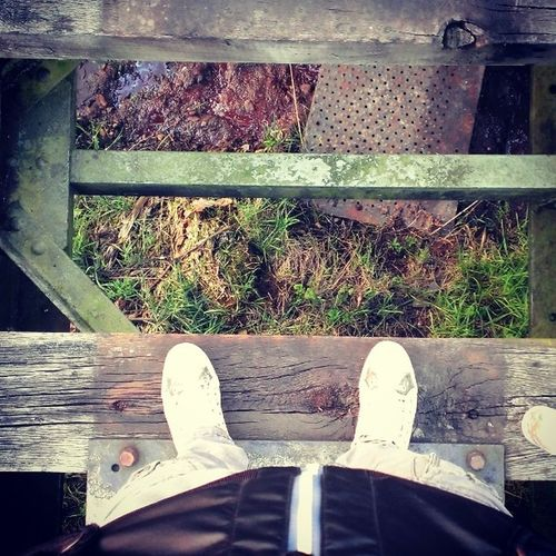 Converse Old Pete  Rail Railroad Train Track From  Home Town Nieuw_Amsterdam Drenthe To  Germany Woods Iron Metal Architecture Nature Enjoy 420 Bjorngruppen Dutch