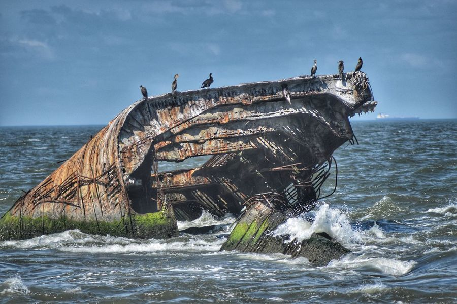 Cape Mays Abandoned Ship Wreck Cape May, NJ New Jersey Shipwreck Abandoned Sunset Beach Ss Atlantus World War 1 Concrete Ship Sunken Ship 1926 Ocean Summertime Birds Relazing Soaking In The Sun Chilling 6 Waves Outdoors Horizon Over Water Fitz's Photos Digital Photography D5500 Nikonphotography