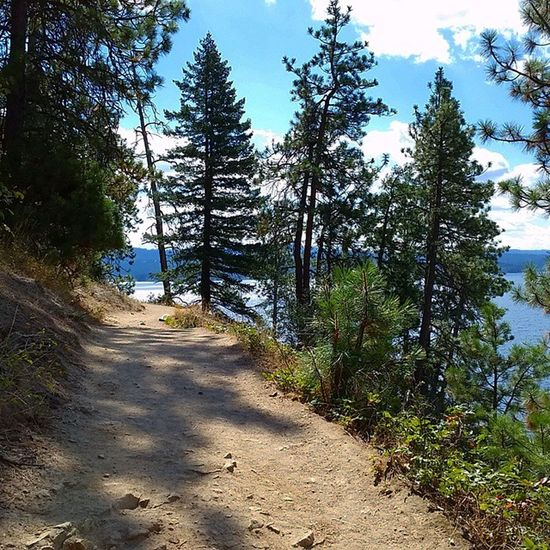 Run on TubbsHill before Kickboxing great run in the Sun along the Lake Running Trailrunning Northwest