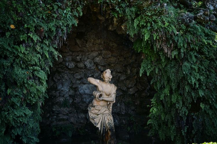 Statue amidst plants