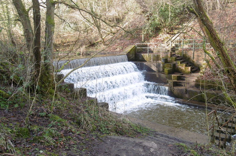 The Victorian industrial waterfall connecting two of the three pools Deep Hayes Country Park Trees Victorian Waterfall Beauty In Nature Day Flowing Water Industrial Waterfall Nature No People Outdoors Power In Nature Water Waterfall