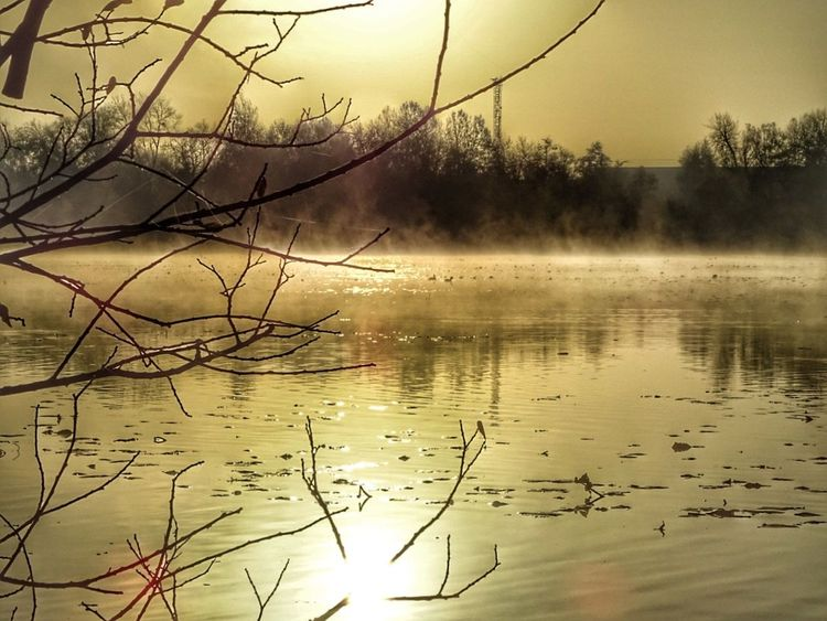 Reflection Water Nature Tree Day Scenics Sky No People Beauty In Nature Sunset Dawn Lake Outdoors Branch